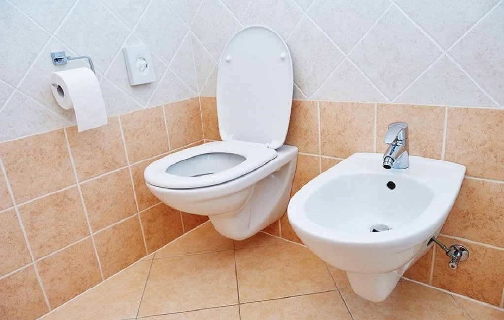 Can a Bidet Replace Toilet Paper