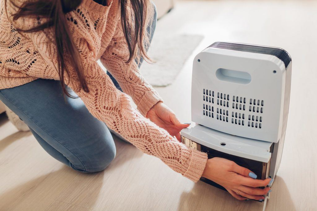Will A Dehumidifier Help With Dust Mites